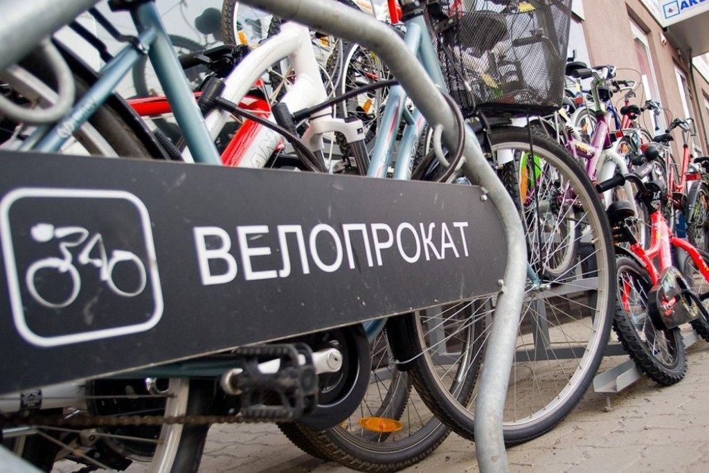 дерзость как организовать прокат велосипедов сходить